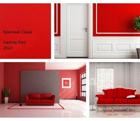 Цвет месяца - Красный саша, 262А
